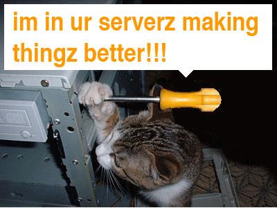 servercat