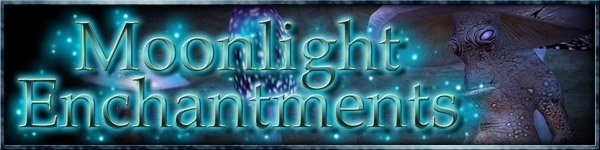 Moonlight Enchantments Banner